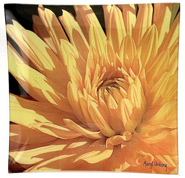 O2 Golden Dahlia