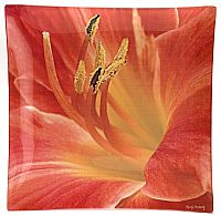 O8 Day Lily - Click for Detail