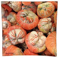 V2 Turban Squash - Click for Detail