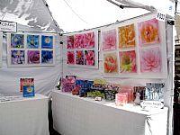 Outdoor Art Festival 2 - Click for Detail